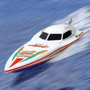 Barca Wing Speed Water cu Telecomanda