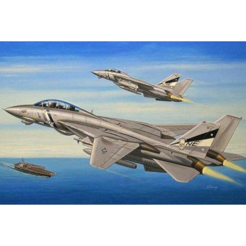1:72  Grumman F-14D Super Tomcat 1:72