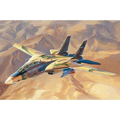 """1:48 """"Persian Cat"""" F-14A TomCat - IRIAF 1:48"""