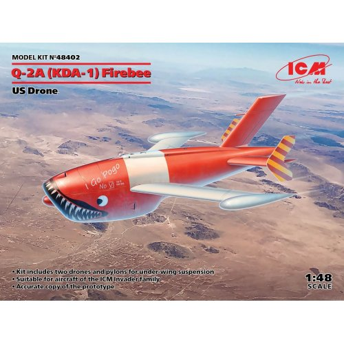1:48 Q-2A (XM-21, KDA-1) Firebee, US Drone (2 airplanes and pilons) (100% new molds) 1:48